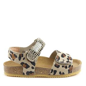 Red Rag Girls Sandal Velcro Leopard 19210-229